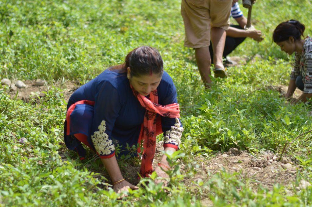 Tree-Pantation-@-Mechi-Ganga-Bishramalaya-Rotary-Club-of-Kakarvitta-29