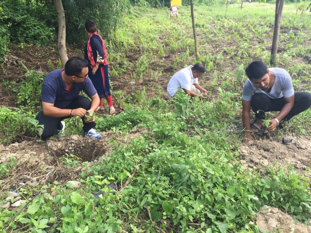 Tree-Pantation-@-Mechi-Ganga-Bishramalaya-Rotary-Club-of-Kakarvitta-51
