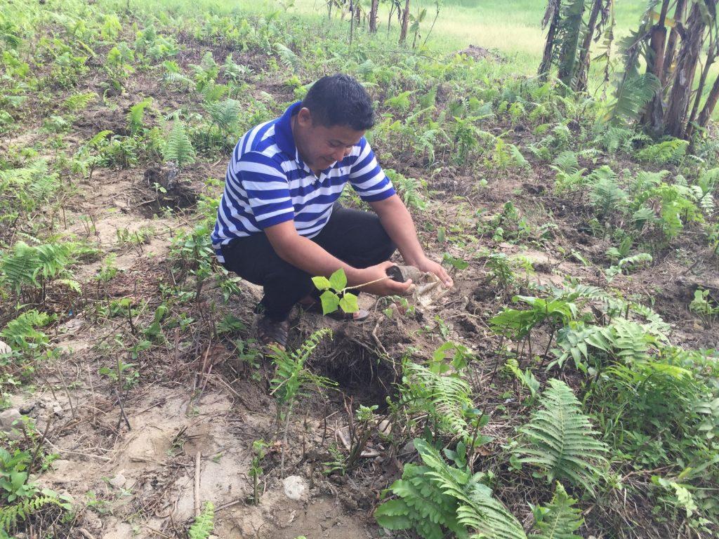 Tree-Pantation-@-Mechi-Ganga-Bishramalaya-Rotary-Club-of-Kakarvitta-53