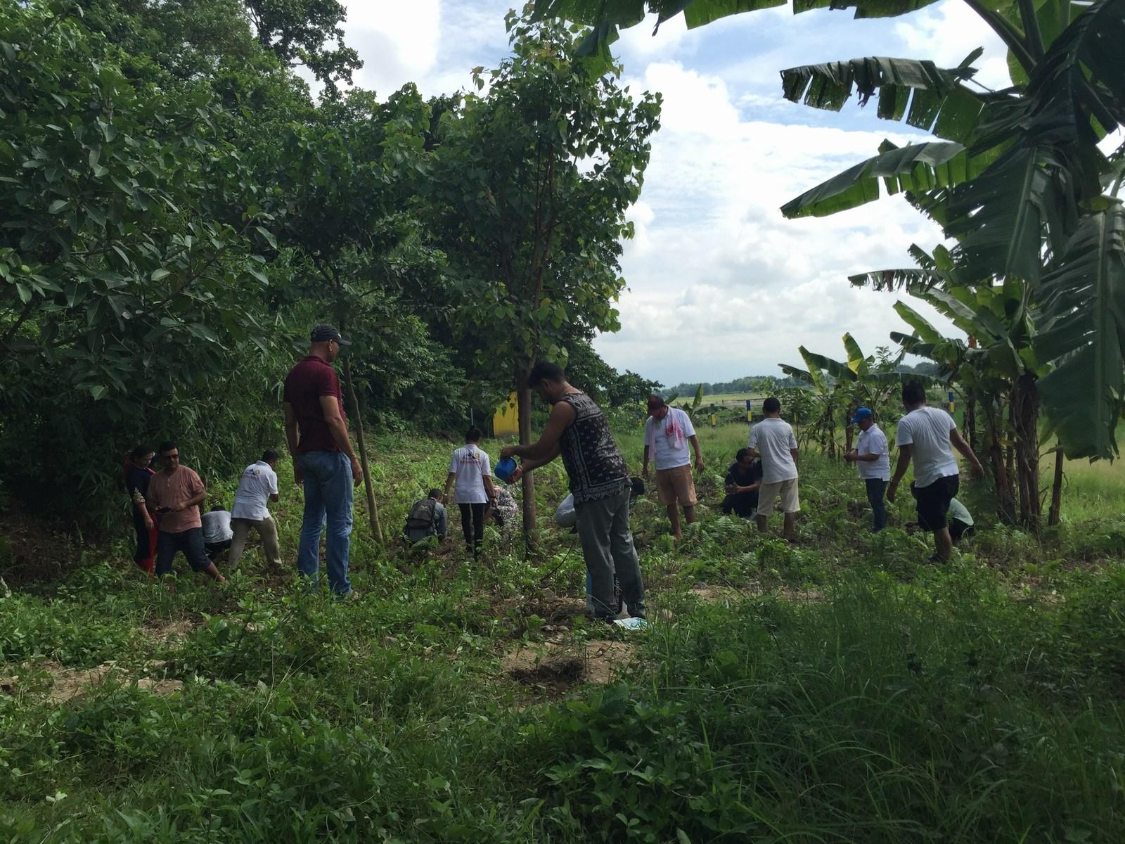 Tree-Pantation-@-Mechi-Ganga-Bishramalaya-Rotary-Club-of-Kakarvitta-58