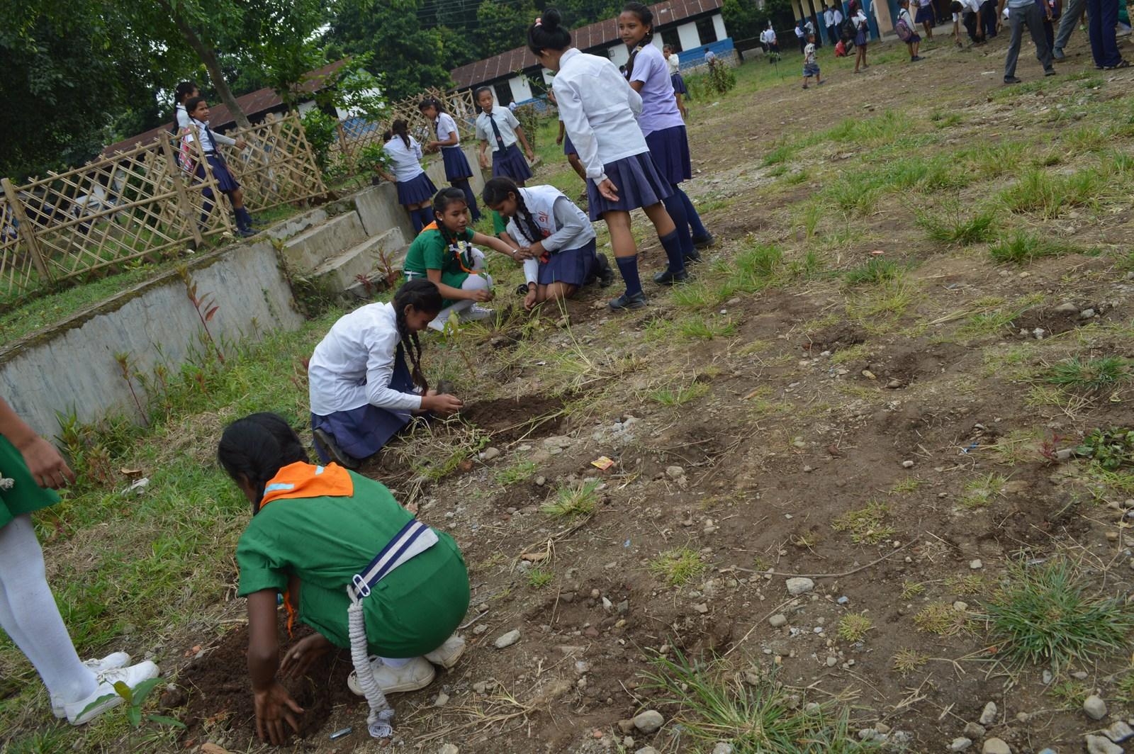 Enviroment Orientation Tree Plantation Rotary Club Of Kakarvitta 14